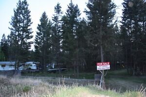 1/2 acreLot for Sale on 168 Mile Road