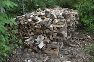 20 cords Ash Firewood