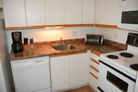 Furnished 2 Bdrm Condo for Sale