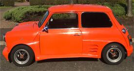 Classic 1995 rover mini
