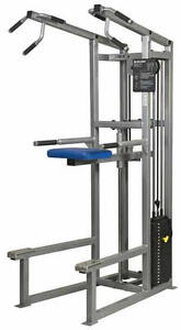 Apex commercial chin up/dip station