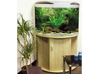 AquaMode 900 aquarium fishtank