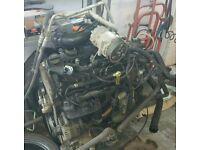 Transit 2.2 fwd tdci engine