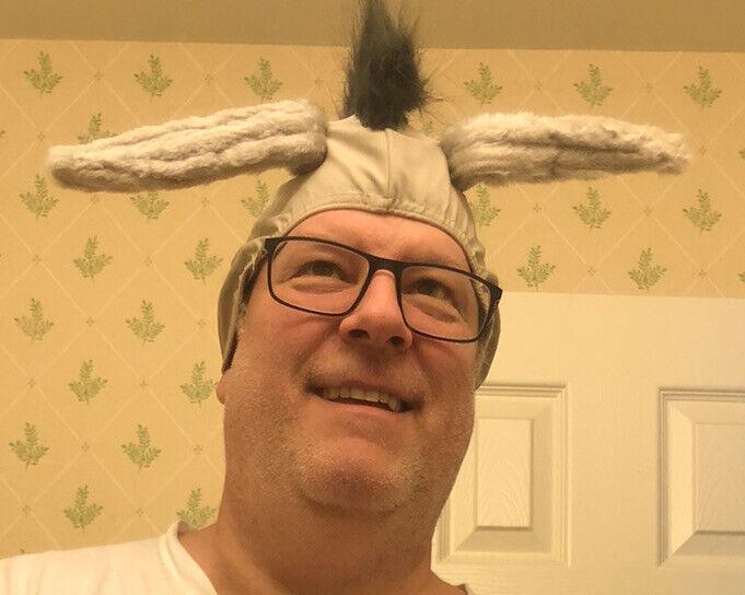 Shrek And Donkey Helmet Hats Halloween A