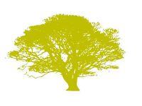 Tree Surgeon - Aberdeen & surrounding area