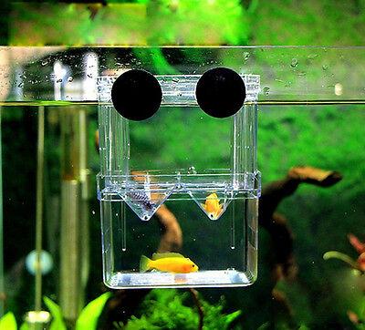 Floating Breeding Box Hatchery Nursery for Live Fry Babies Pregnant Fish