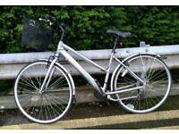 Light grey appolo bike