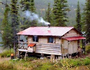 Je recherche une maison jeune femme la recherche duune - Recherche petite maison a louer avec jardin ...