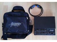 Acoustic Image Focus 2 amp