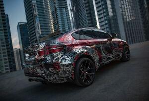 car wrap / ceramic coating / paint protection / vehicle wrap