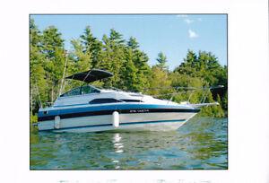 Boat for sale - Bayliner '88