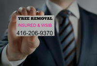 Tree and shrub removal. Branch and wood disposal. 416-206-9370