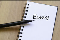 Essay and assignment writing assistant