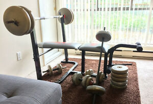 Bench press + 210lbs weight plates + dumbbels + more!