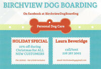 Birchview Dog Boarding is just 30 mins from Hamilton!
