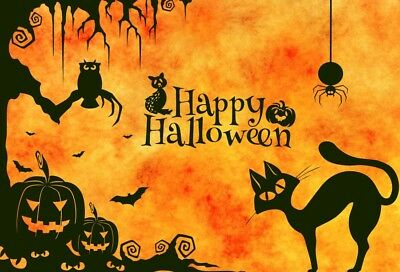 Halloween Background Animation (7x5 Animal Backdrop Halloween Pumpkin Lantern Background Photography Studio)