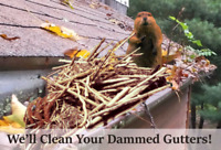 Gutter Cleaner's - Fall Special