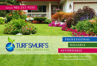 Spring Cleaning, Grass Cutting, Lawn Care Programs