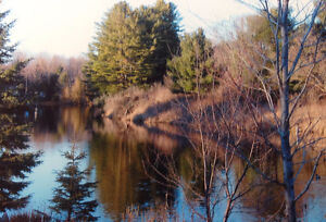 Vacant Waterfront Property in Norland (40 min from Haliburton)