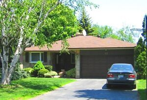 Trusted Home Inspector - 4900 Inspections since 1997 Windsor Region Ontario image 10