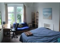ROOM TO RENT, Mutley Plain