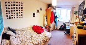Lovely double room in Headington - SHORT LET