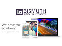 INDUSTRY LEADING WEBSITE DESIGN, COMPETITIVE PRICING - Bismuth Digital Solutions Ltd