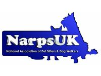 Dog Walking and Pet sitting , cover all south yorkshire