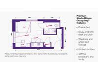 Premium Studio room in Liberty Plaza Aldgate East to rent