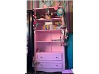Pink Bookcase with drawers