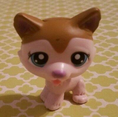 LITTLEST PET SHOP LPS MCDONALDS TAKEN OFF STAND CREAM & BROWN PUPPY DOG TONGUE