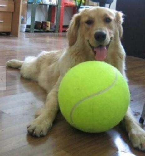 "Giant Tennis Ball 9.5"" Signature Big Tennis Ball for Children Adult Dog"