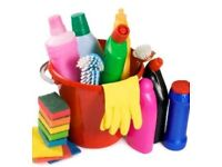 Domestic cleaning/Housekeeping Fareham