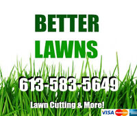Professional Lawn Maintenance BOOK NOW AND SAVE EVENT