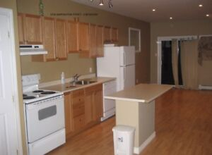 ** Modern 3 Bedrooms Apts In South End for Sept **