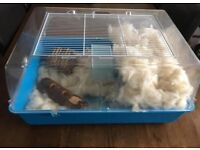 Hamster Cage FREE