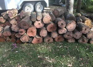 Firewood warm burning Black Hill Cessnock Area Preview