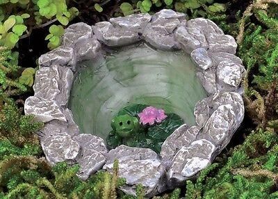 Miniature Micro Frog Pond GO 17435  Fairy Garden  Terrarium (Fairy Garden Terrarium)