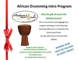 African Drumming Program as a Christmas  Gift!