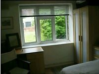 Large double room in two bed flat - Clifton