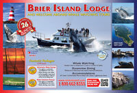 Stay, Sail and Savor Brier Island Whale Watching