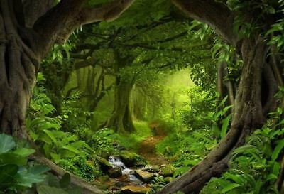 Forest tree rattan cave Backdrop Photography Props Photo Vinyl Background 5X3FT