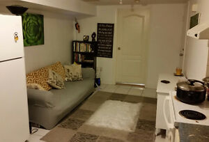 Room to Sublet JUNE-JULY  Downtown TORONTO!!!!