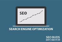 SEO And Internet Marketing Consultant