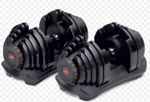 NEW BOWFLEX SELECTTECH 1090 DUMBBELLS with a new Stand