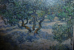 "Vincent van Gogh ""Olive Orchard"" Textured Art Print Stratford Kitchener Area image 6"