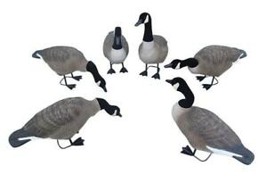 Field goose 6PCS for one set 239540
