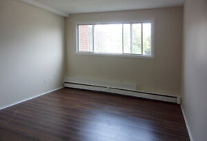 Pet-friendly 2-bedroom in Dartmouth available January 1