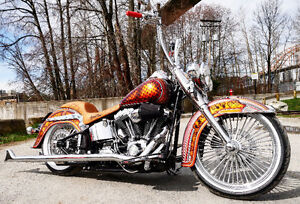 Chicano Softail Mexi Special
