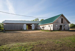 Looking for horse farm near Montreal ? potential income 7500/mo Belleville Belleville Area image 2